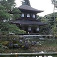 京都観光☆彡