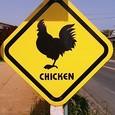 chicken注意!?